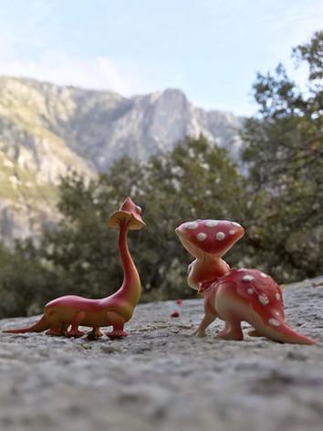 fungisaurs-yosemite-together.JPG