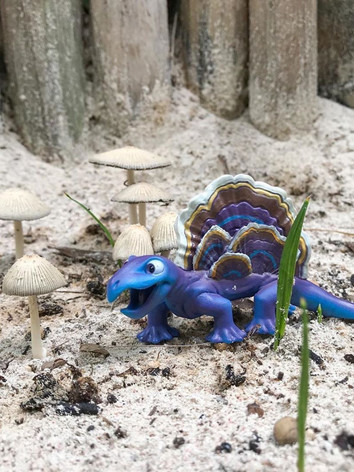 fungisaurs-tulum-mushrooms (1).JPG