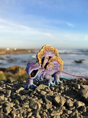 fungisaurs-bigsur2.JPG
