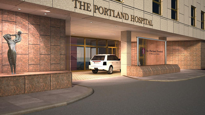 The Portland Hospital, healthcare project