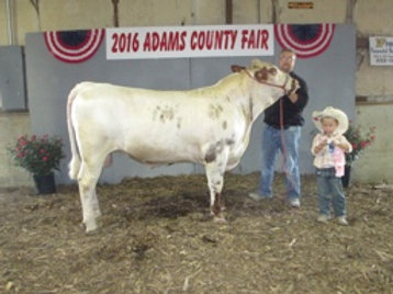 "Semen From: McDonald Cattle Company ""REDLINE"" MC19C"