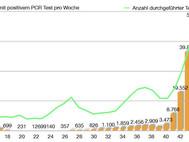 Infektionslage, Belastung der Spitäler in der Schweiz im Kalenderjahr 2020 - Situationsanalyse
