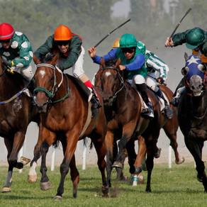 Betting on the Jockey