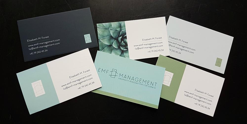 EMF Management, Property Renovation for Expats