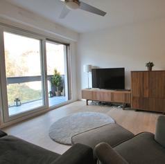 Apartment Renovation Pays de Gex (FR)