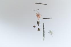 花飾り 植物のモビール