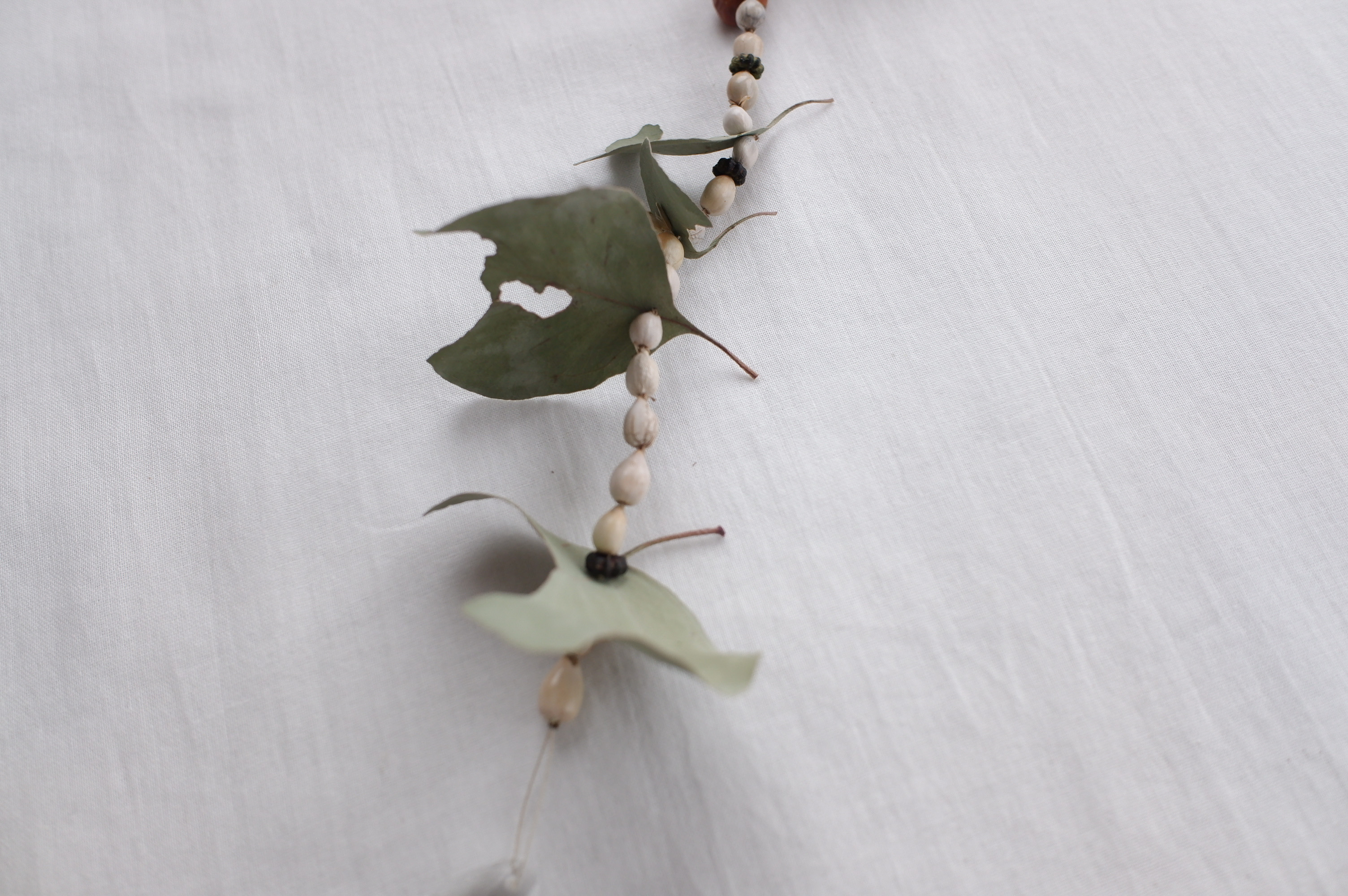 植物のサンキャッチャー(s-0055)