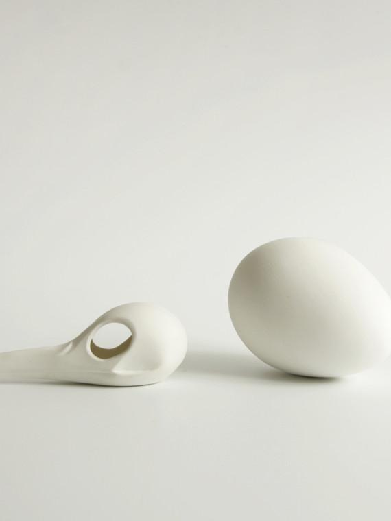 Skull and egg