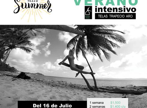 """Curso de Verano """"Danza Aérea"""" 2018"""