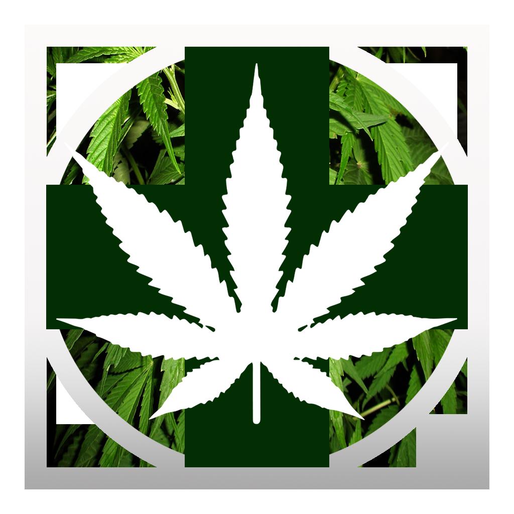 The High Country Flagstaff Medical Marijuana Clinic