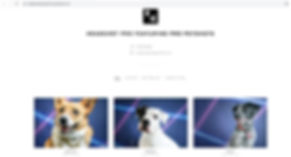 pixieset.JPG dog photography gallery pro petshots corgi rescue dogs mixed breed