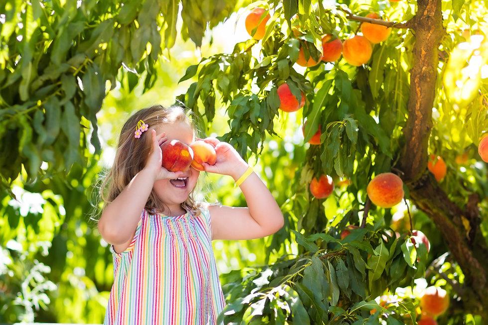 girl with peaches.jpg