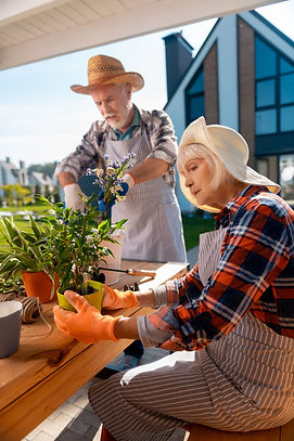 best for viewing elderly couple planting