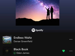 Black Book Added to Spotify Playlist Indie Rising Stars