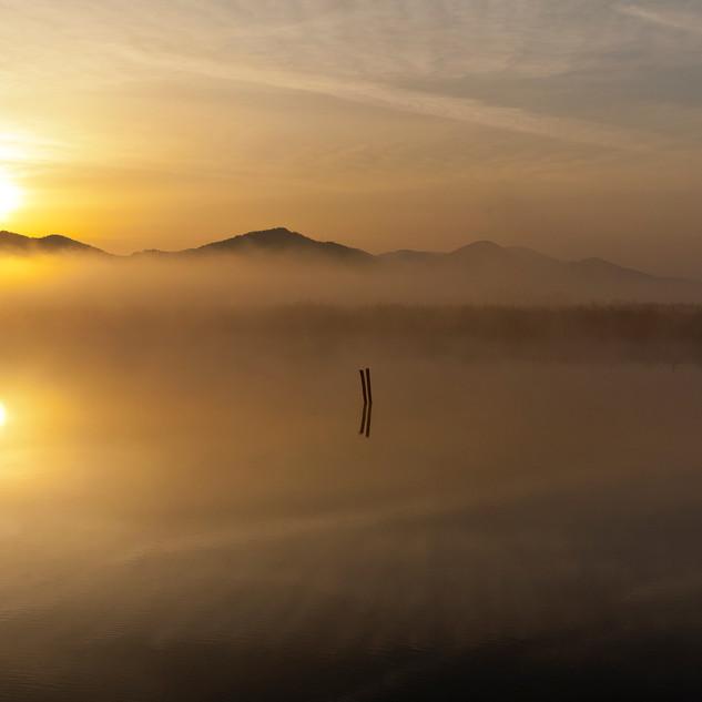 alba sul lago di Massaciuccoli