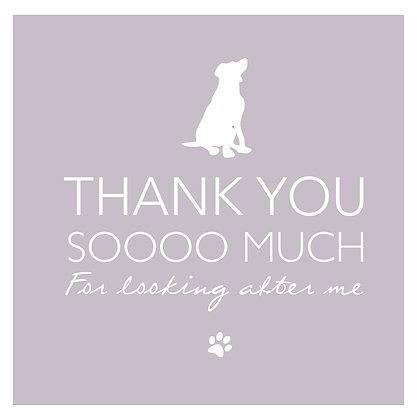 Thank you - Dog pink