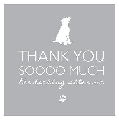 Thank you - Dog Grey