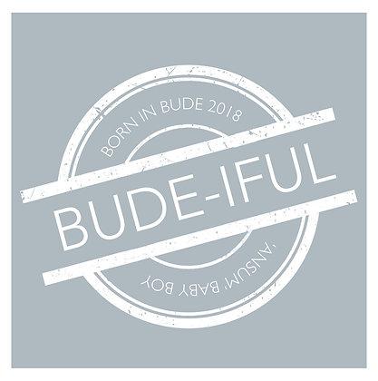 Born in Bude - Boy