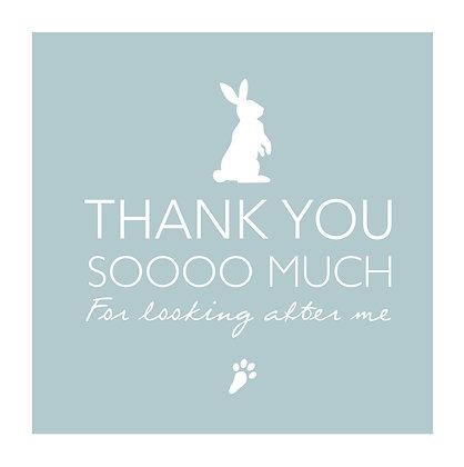 Thank you - Rabbit