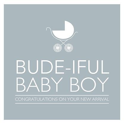 Bude-iful Baby Boy