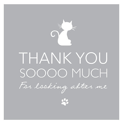 Thank you - Cat Grey
