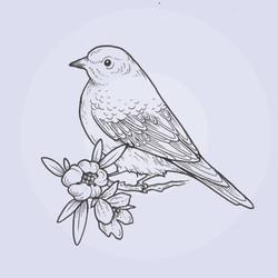 bird tattoo flash