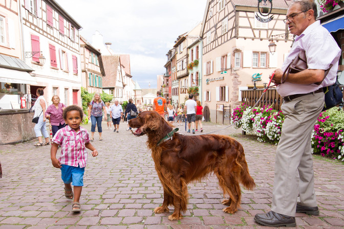 3 Awesome Experiences to have in Riquewihr