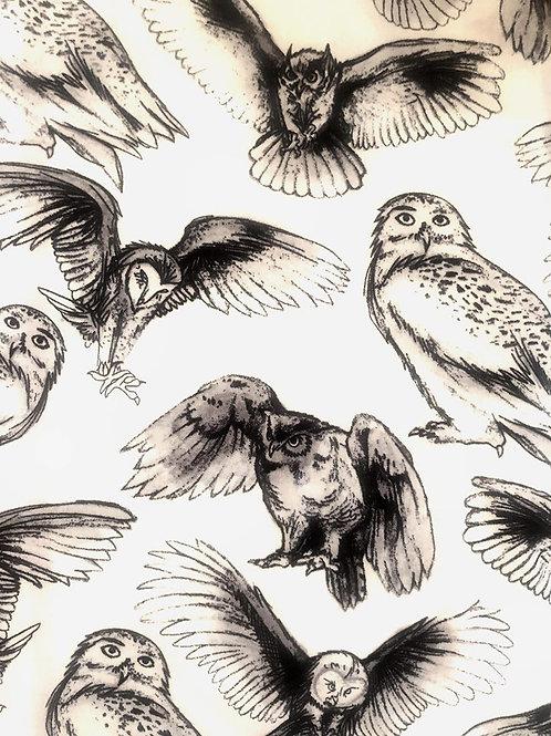 Proud Owls