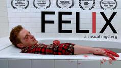 BEST FICTION 2020- FELIX