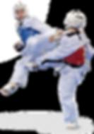 taekwondo_PNG63.png