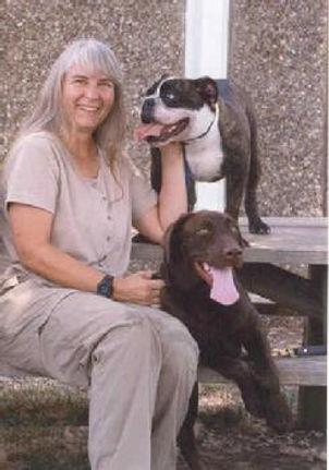 246_shelter_dogs.jpg