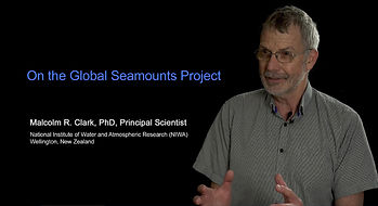 Global Seamounts Project