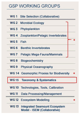 Figure 2: Proposed addition to GSP Working Groups: Taxonomy & Systematics.