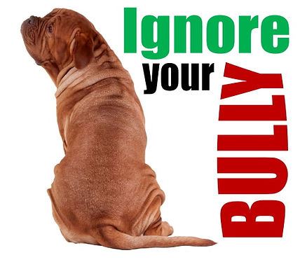 BrainyDog-Programcover-Ignore-bully.jpg