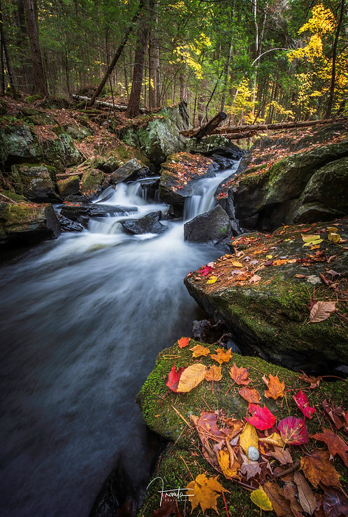 Alder Creek Falls