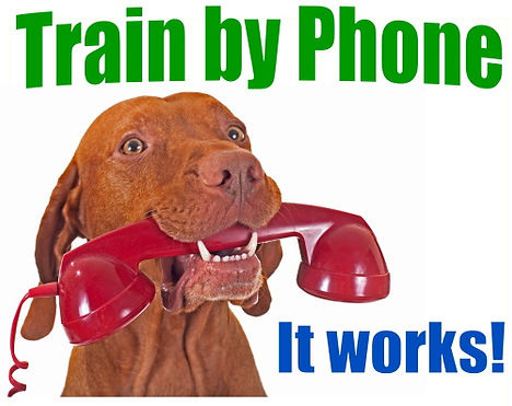 train by phone.jpg