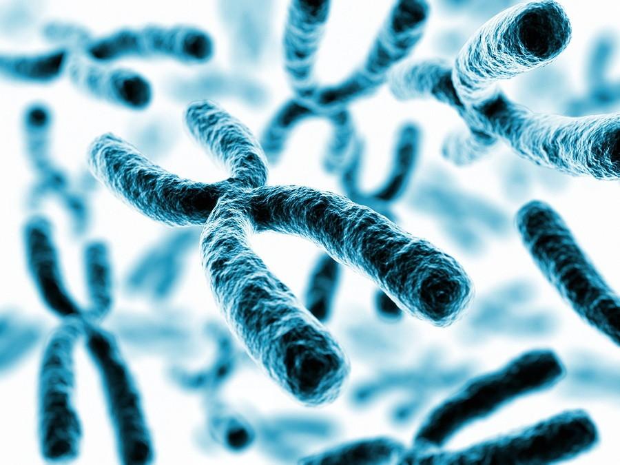 Risk and Dementia – Genetics