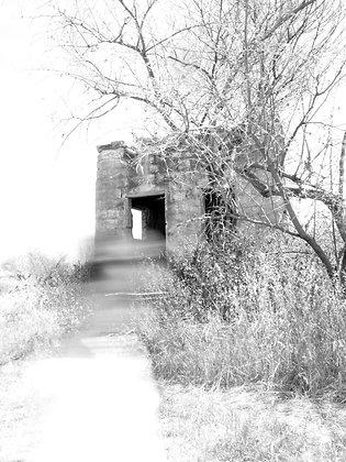 צילום אמנותי בשחור לבן של מבנה נטוש
