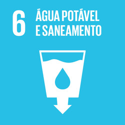SDG-icon-PT-RGB-06-1