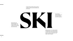 New Ski Logo with design reason