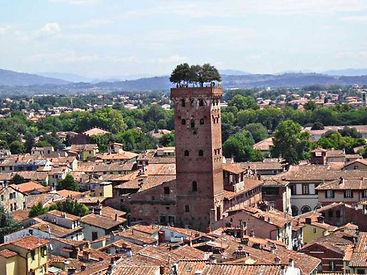 torre guinigi.jpg