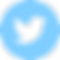 twitter-logo-button (1).png