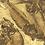 Thumbnail: Mass Mortality Fishes 'Gosiutichthys Parvus'