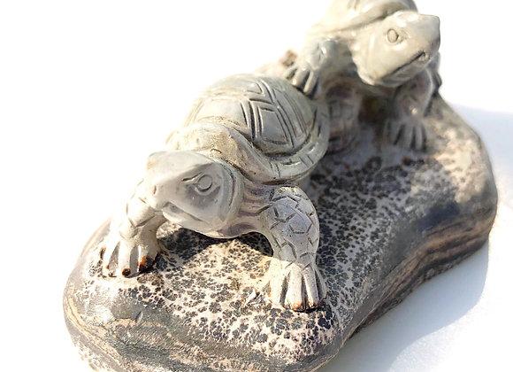 Jasper Tortoises