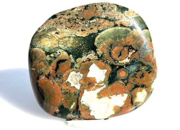 Rainforest Rhyolite Palm Stone