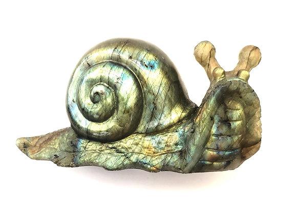 Labradorite 'Snail'