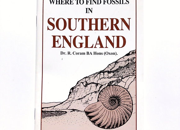 Southern England Fossil Hunting