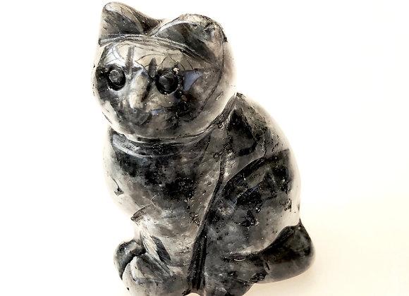 Larvikite Cat