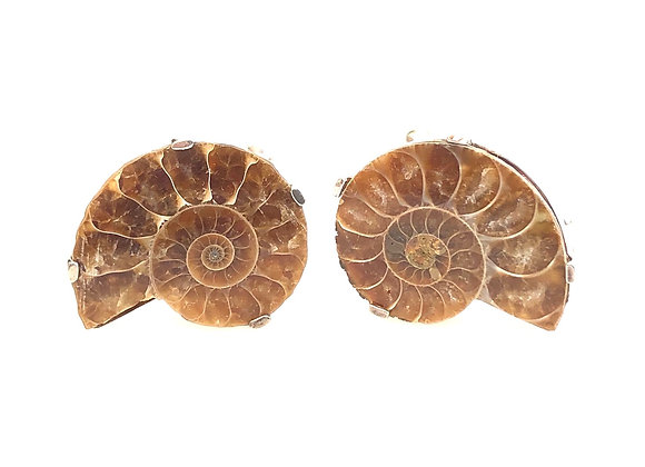 Ammonite Cufflinks 925 silver