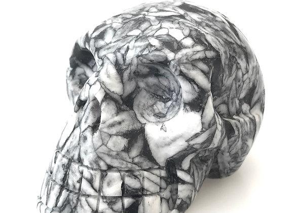 Pinolith Skull